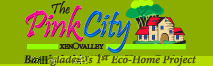 The Pink City Xenovalley